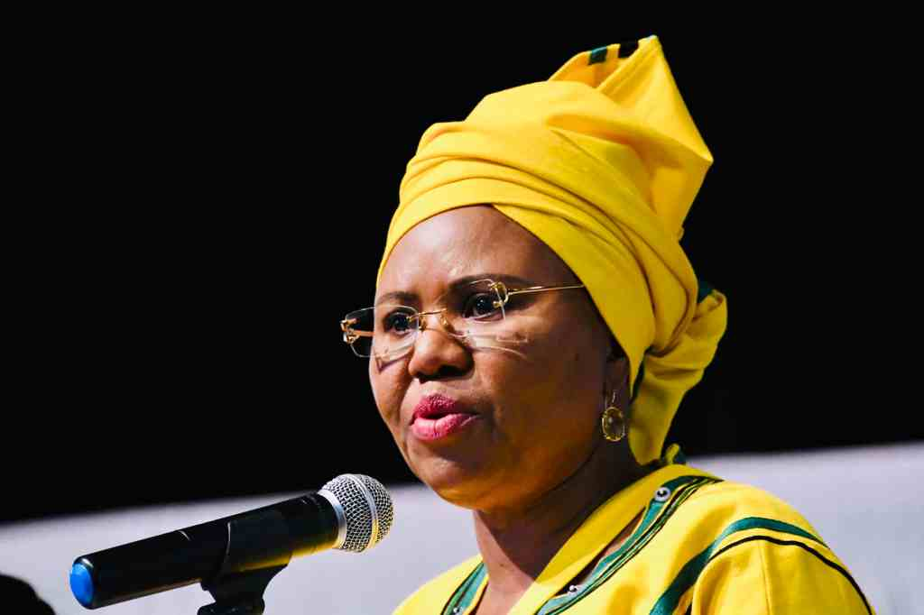 Lindiwe Zulu denies involvement in Sassa water cannon incident