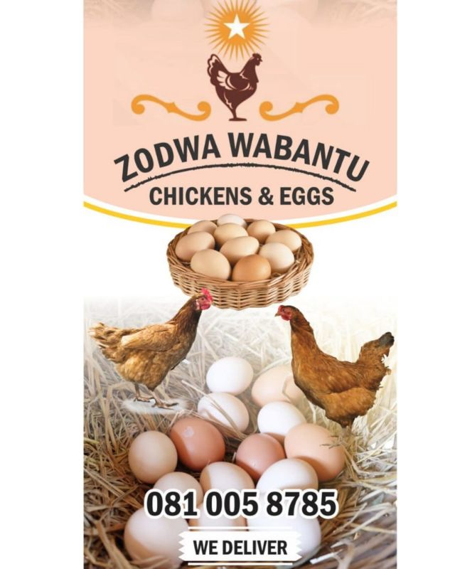 Zodwa Wabantu Taking Her Chicken Business Seriously, Gives Out Ce ll NumberFor Orders