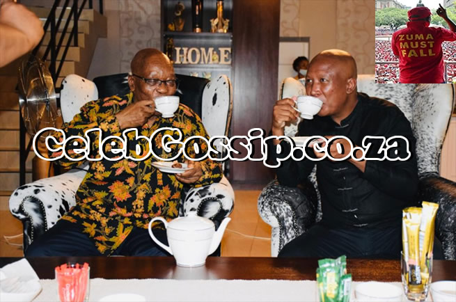 Inside Julius Malema and Jacob Zuma's tea party – This is what they discussed
