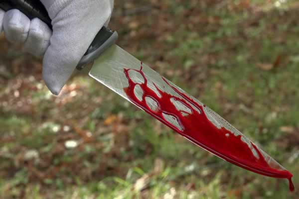 Man stabbed to death by his girlfriend's drunk sister