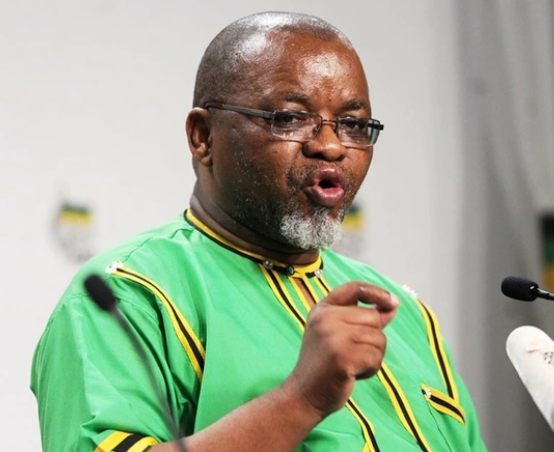 Gwede Mntashe Get Exposed As His 'Plot To Paralyze' Ace Magashule Is Uncovered