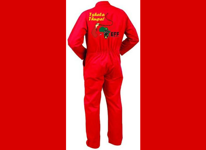 When I grow up I want to be Julius Malema; Pupil suspended for wearing EFF regalia to school