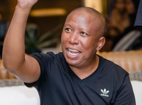 VIDEO: Malema's 2019 prophecy comes to pass