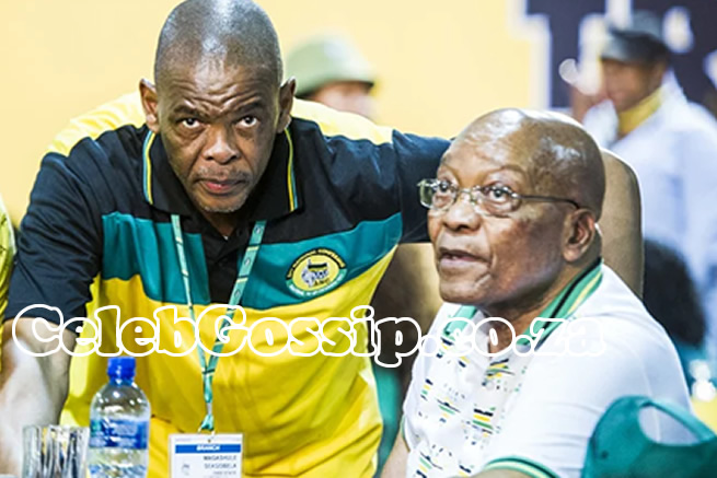 Ace Magashule speaks on Jacob Zuma's arrest