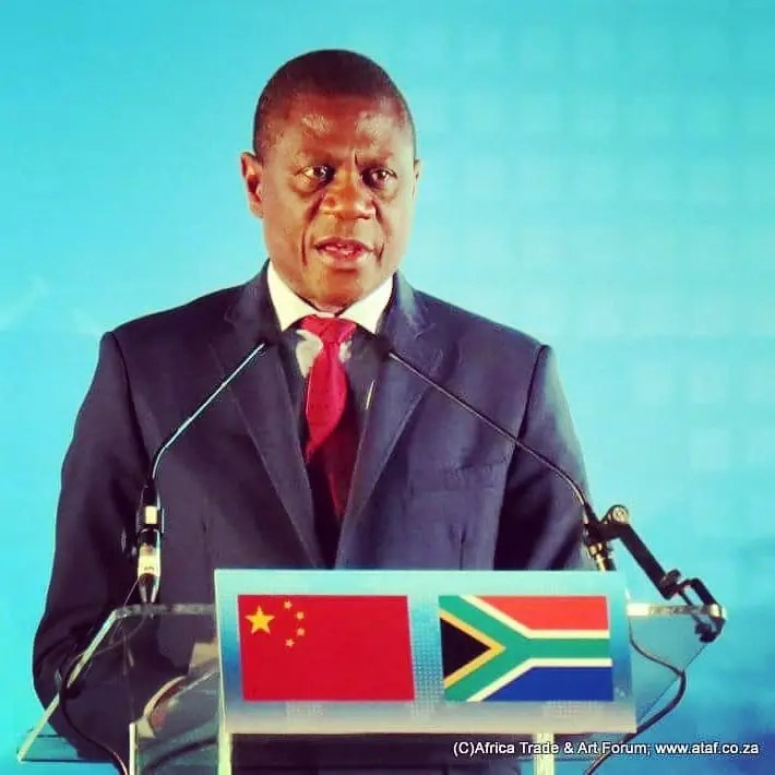 DA taking path of inequality and exclusion, says Mashatile